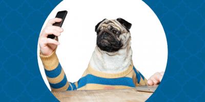 como economizar no celular