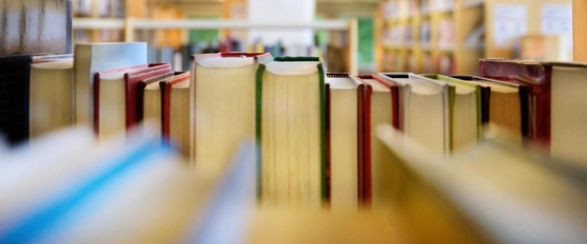 sebos online com livros usados