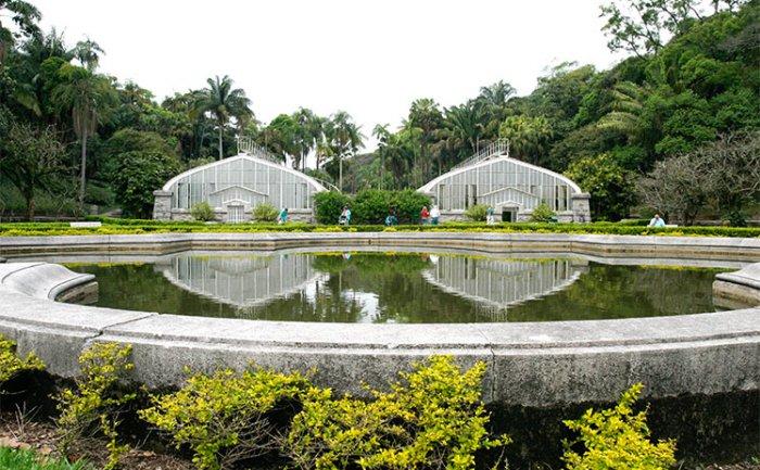 passeios grátis para crianças no jardim botânico