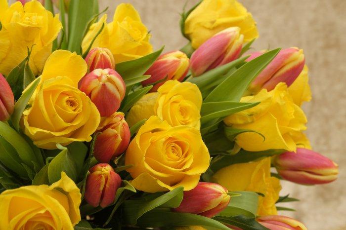 flores em homenagem ao dia da mulher